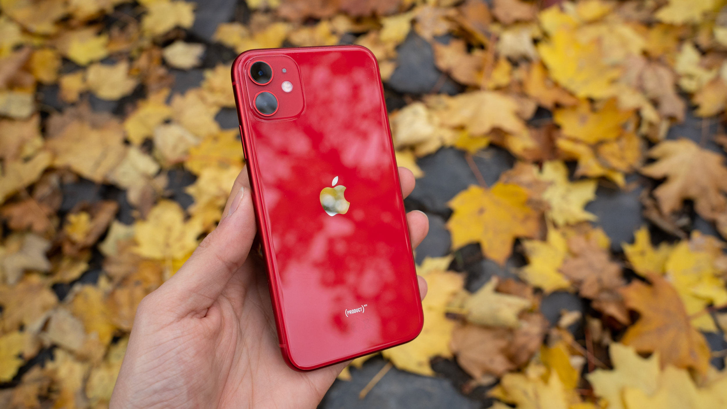 iPhone 11 im Test